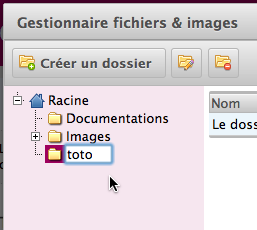 GestFiles-RenameFolder2.png
