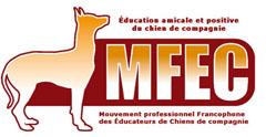 MFEC 40.jpeg